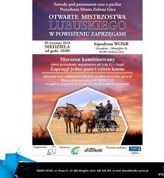 Zawody w Powożeniu 09 wrzesień 2018 r. w Drzonkowie.